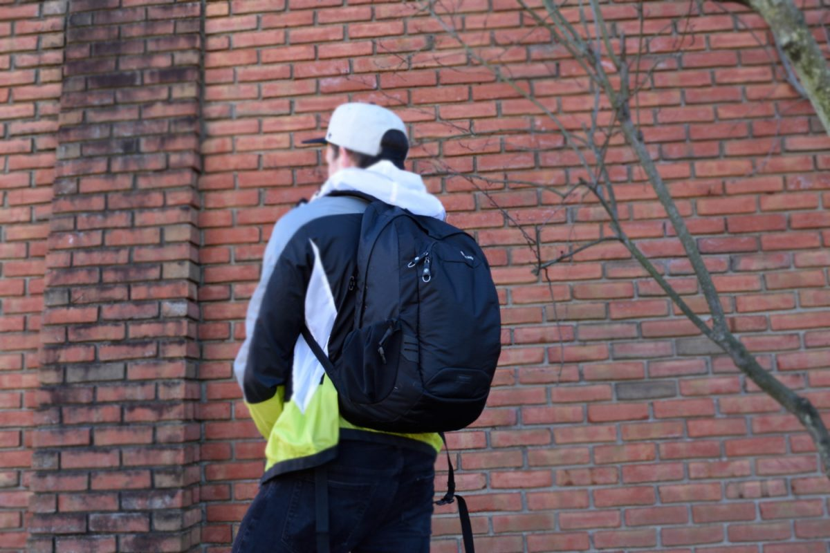 pacsafe venturesafe 25l wearing